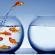 3 pasos para ser un emprendedor novedoso
