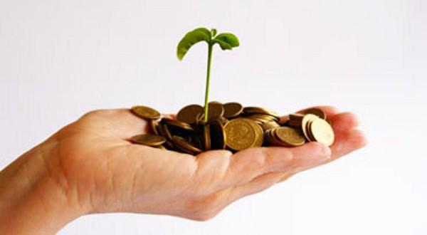 Ideas para Empezar tu negocio con POCO Capital
