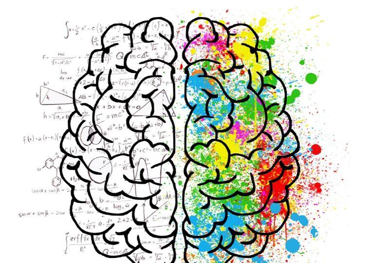 Las dos maneras de pensamiento del libro Pensar rápido pensar despacio